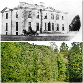 Photo:Front of Towerhill as it once wasand as it is today, the ruin disguised by trees and ivy