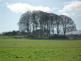 Photo:Rathcarreen where Ballinrobe Race Course is located