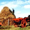 Page link: Farming in South Mayo Long Ago - Kilmaine