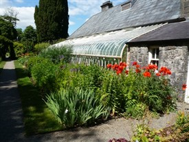 Photo:One of the glasshouses at Turlough Park House