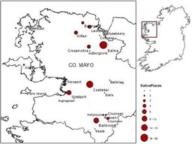 Photo:Place of origin of the Mayo Orphan Girls. (Image: Author)